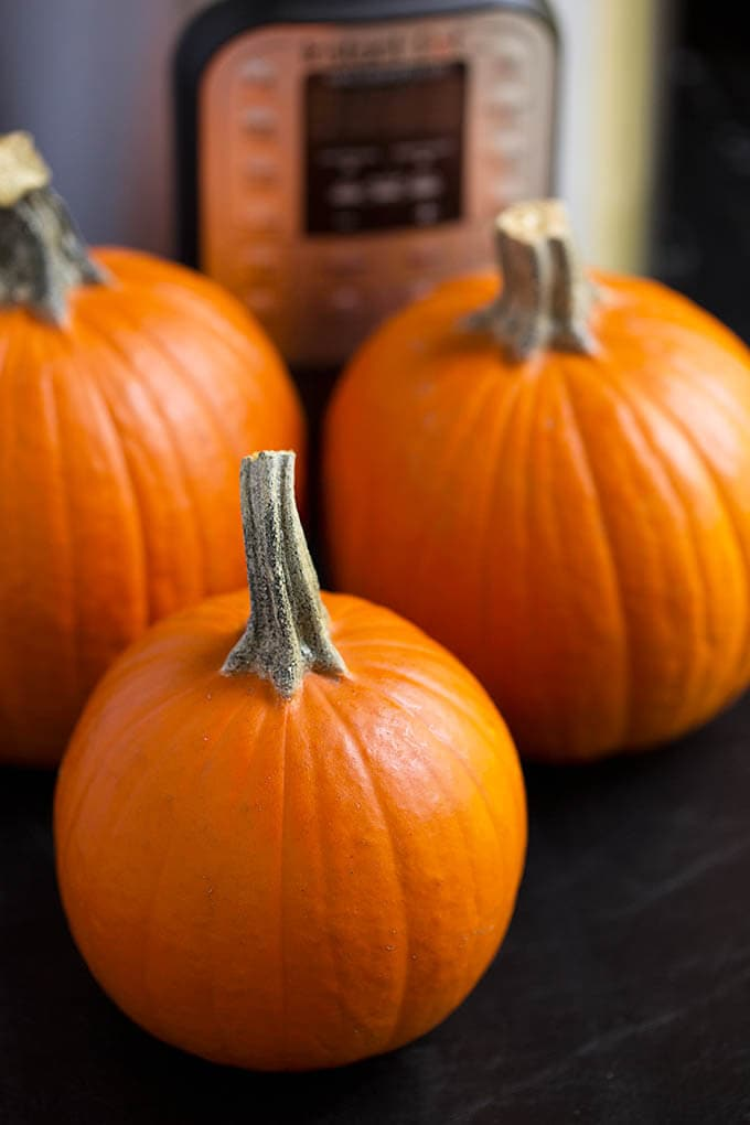 Three small pumpkins in front of pressure cooker
