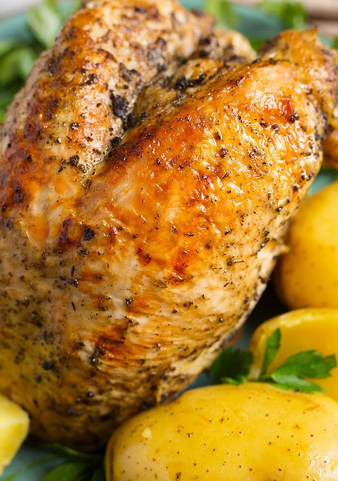 Close up of turkey breast and potato dinner