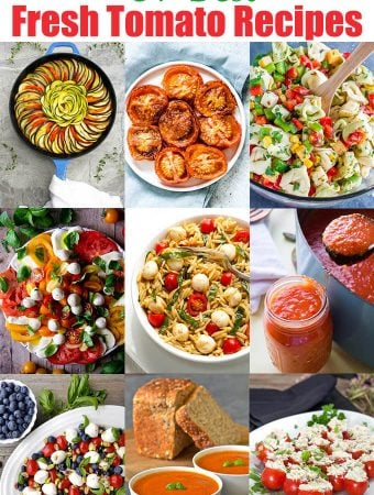31 best fresh tomato recipes