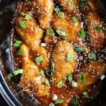 Honey Garlic Chicken in slow cooker