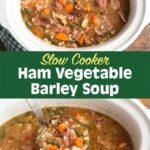 crock pot Ham Vegetable Barley Soup