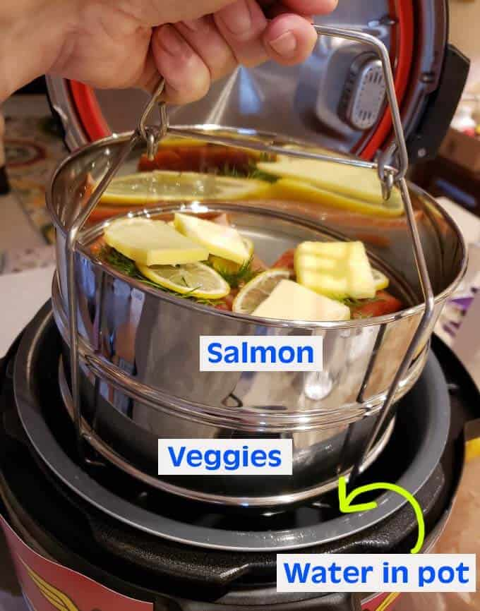 Pot in pot salmon veggies